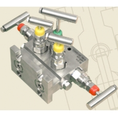 Five - Valve, Direct Mounting - T Type - Prisma