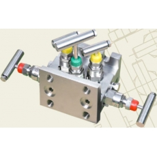 Five - Valve, Direct Mounting - H Type - Prisma