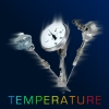 Thermomètres à cadran - Prisma