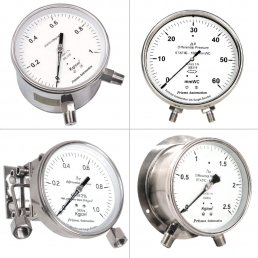 Differential Pressure Gauge - Bellow Type - Prisma