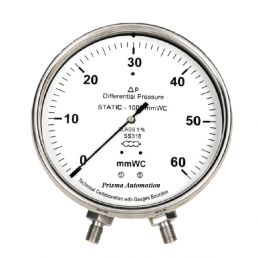 Differential Pressure Gauge - Capsule Type - Prisma